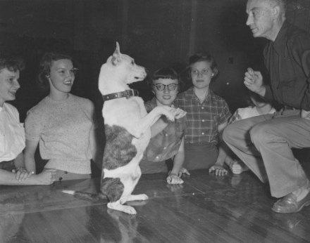 Ο Μπάντυ, ένας κωφός σκύλος που ενέπνευσε χιλιάδες παιδιά...