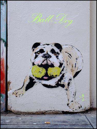 Bambi-Ball-Dog-Street-piece1