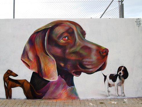 pichi_Avo_dog_Valencia