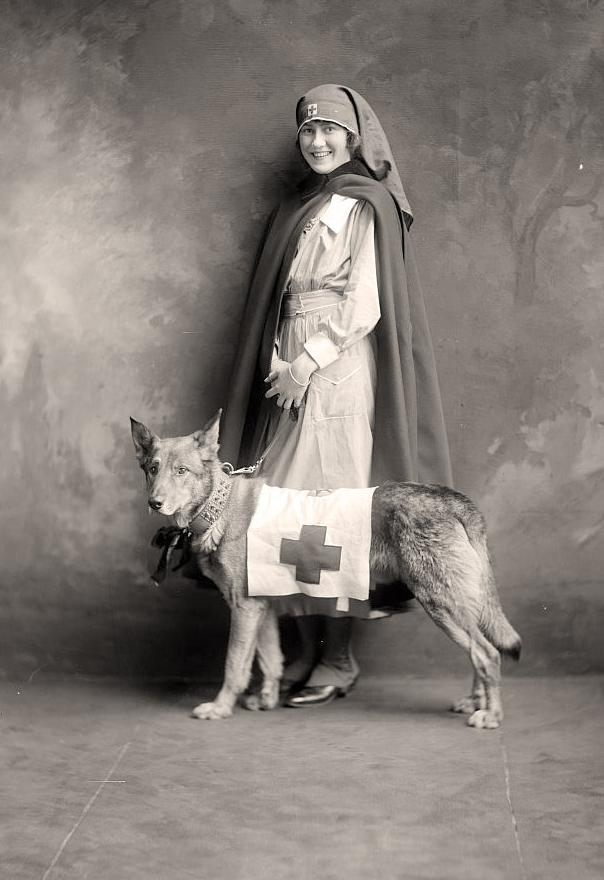 Nurse with Rescue Dog. It was made between 1905 and 1945 by Harris & Ewing.