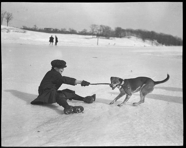 1934 - 1956: Boy and dog: Tug of war on ice