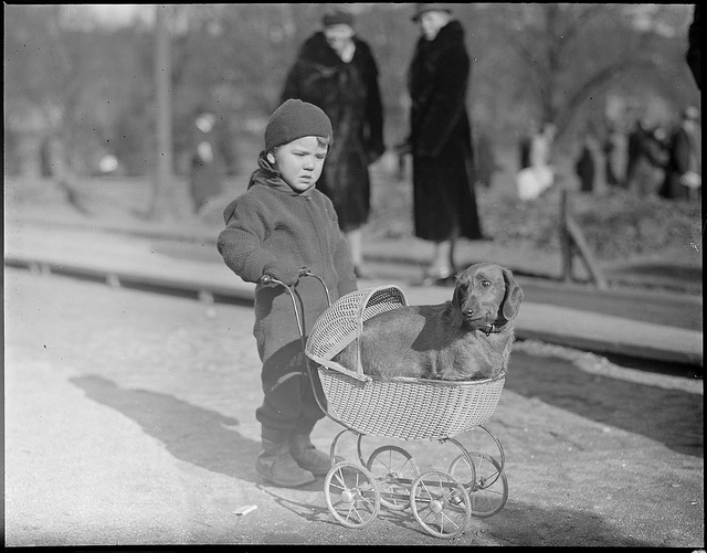 1934-02: Dog in the Public Garden with kiddies