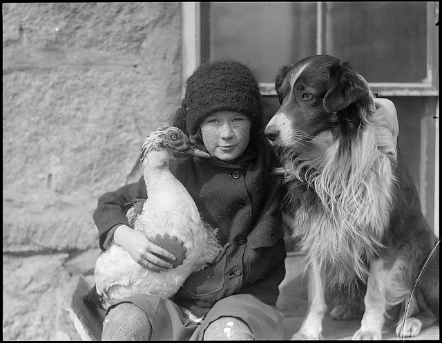1917 - 1934: Girl with bird and dog