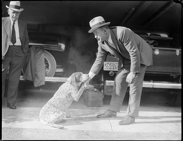 1917 - 1934: Man shaking dog's hand