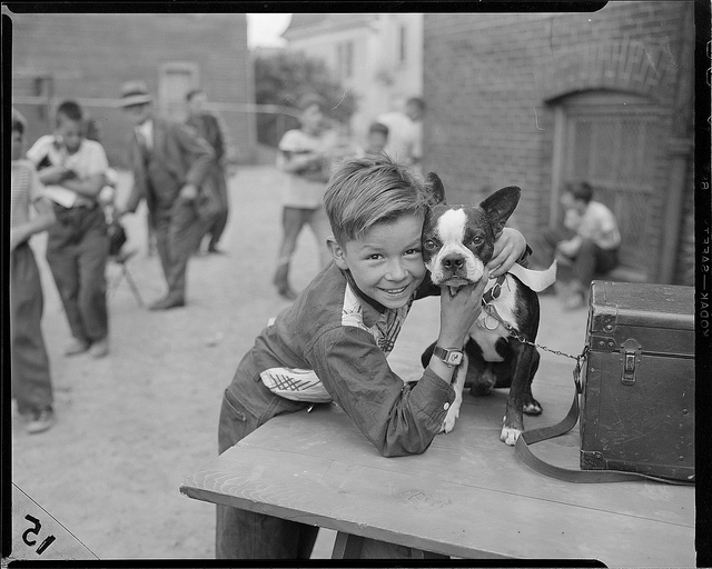 1947: Boy with terrier