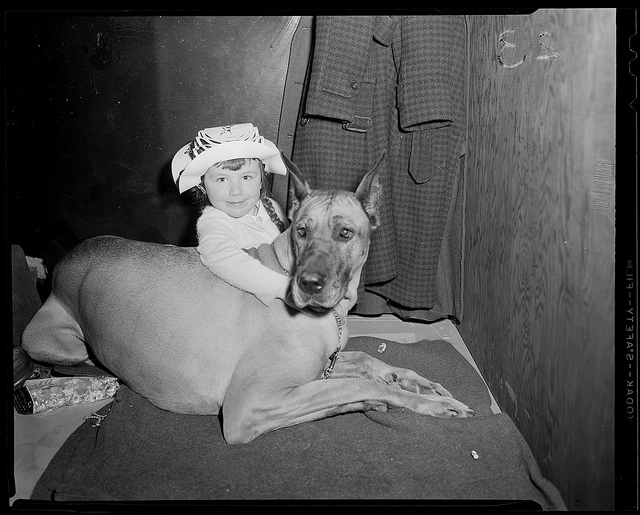 1934 - 1956: Girl with Great Dane
