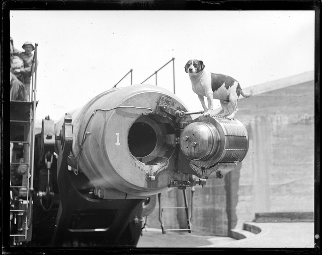 1917 - 1934: Boston Harbor big gun, dog on top