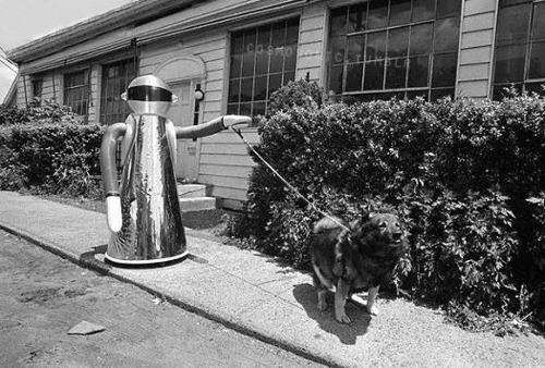 Robot dog walker, 1978.