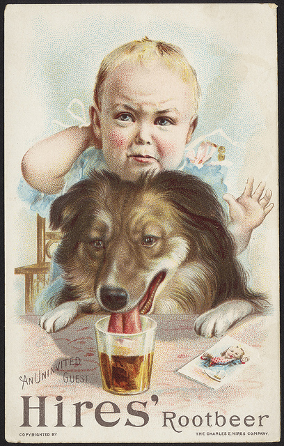 1870 - 1900: An uninvited guest, Hire's rootbeer