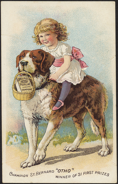 """1870-1900: Champion St. Bernard """"Otho"""" winner of 31 first prizes - James Pyle's Pearline washing compound"""