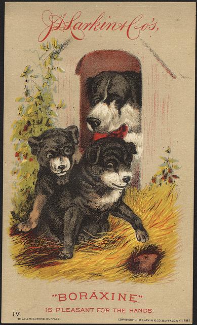 "1882: J. D. Larkin & Co's ""Boraxine"" is pleasant for the hands"