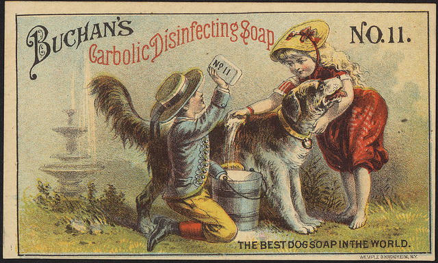 1870-1900: Buchan's Carbolic disinfecting soap No. 11 - the best dog soap in the world