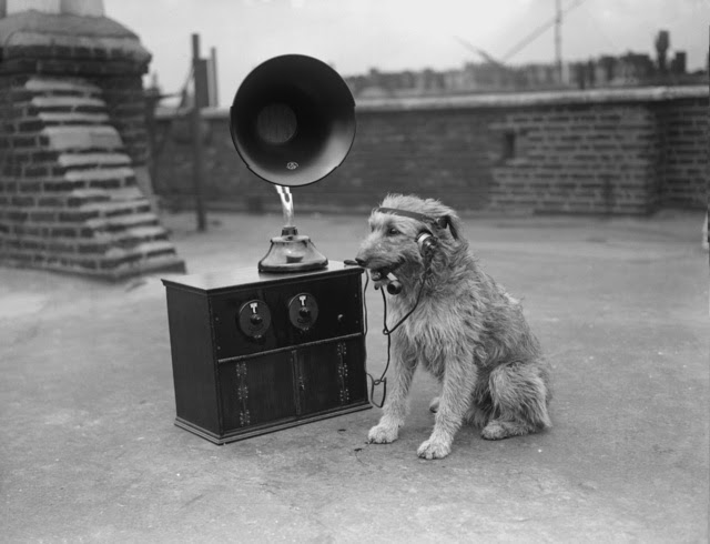 A dog listening to the radio with earphones, whilst smoking a pipe, 1929 (Photo by Fox Photos/Getty Images)