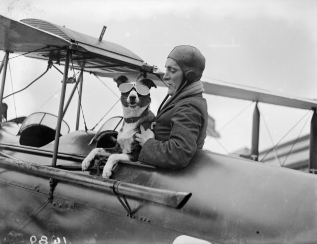 1926: Mr. Barnard, a member of the London Aero Club, checks his canine co-pilot's goggles. (Getty Images)