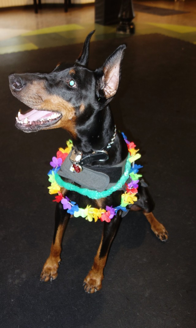 Roxy getting into the tropical theme and enjoying the party!