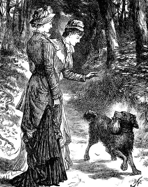 """""""And in his mouth 'Waif' certainly carried something."""" Cassell's Magazine, 1879."""