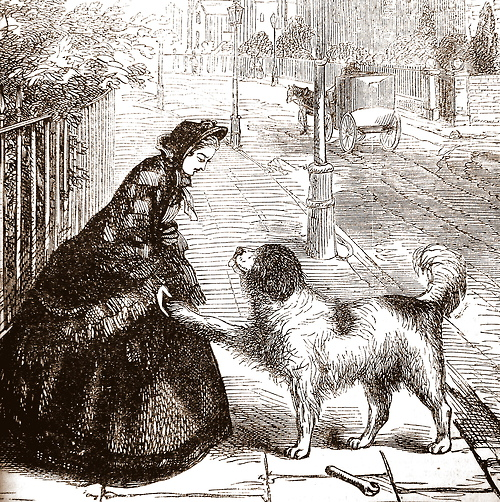 'Constance finds a new friend.' Cassell's Family Paper, 1863-4.