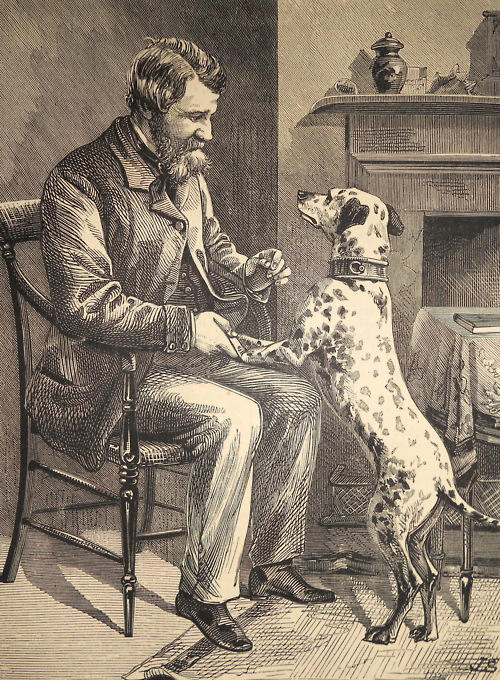 """'A Dog's Gratitude"""" Chatterbox, 1881."""