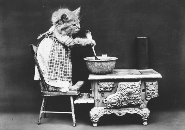The cook. (Harry Whittier Frees/Library of Congress)