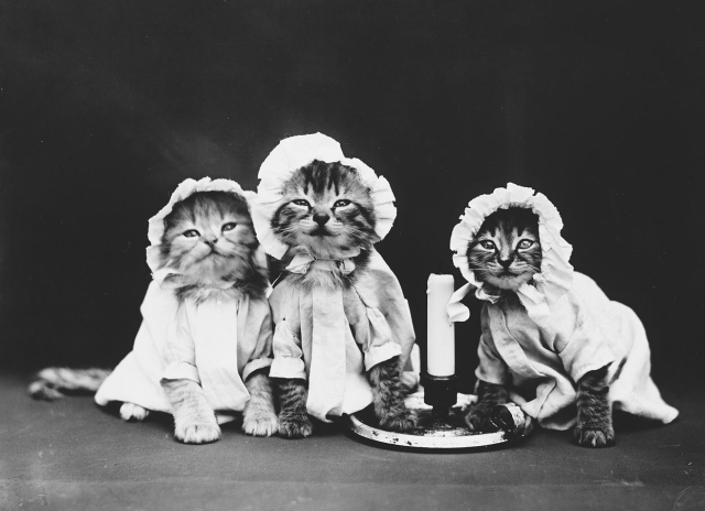 Ready for bed. (Harry Whittier Frees/Library of Congress)