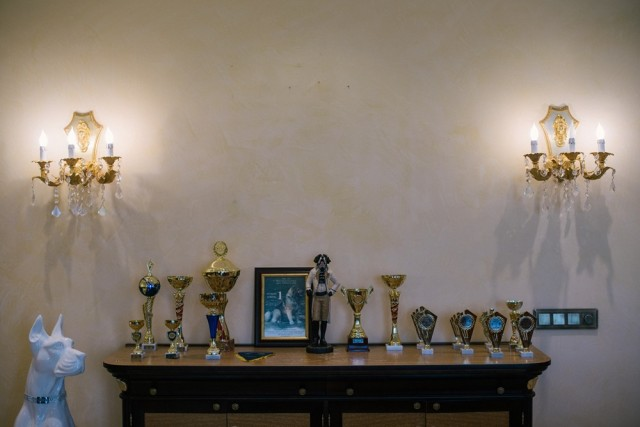 The trophies room in Yanukovych's kennel