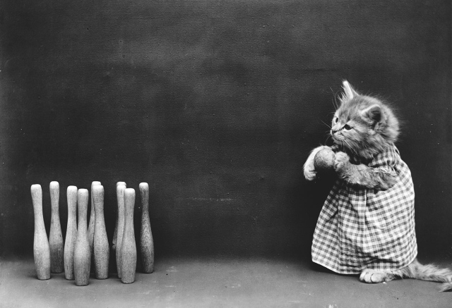Ten pins. (Harry Whittier Frees/Library of Congress)