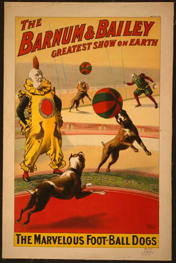 The Barnum & Bailey greatest show on earth. The marvelous foot-ball dogs - 1900