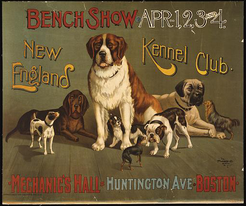 Bench show. New England Kennel Club - 1890