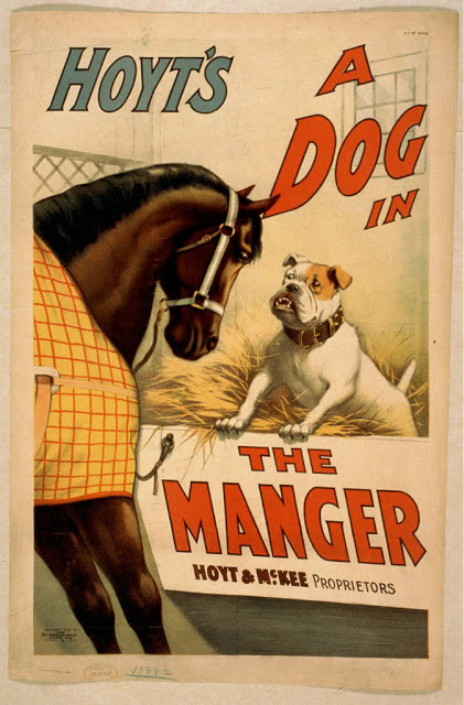 Hoyt's A dog in the manger - 1859-1900