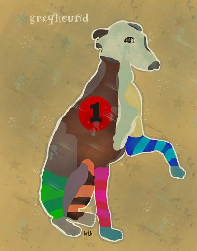 greyhound trap 1
