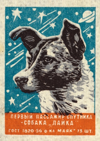 A matchbox label from 1957 show Laika. The text translates as The First Sputnik Passenger – the dog Laika.