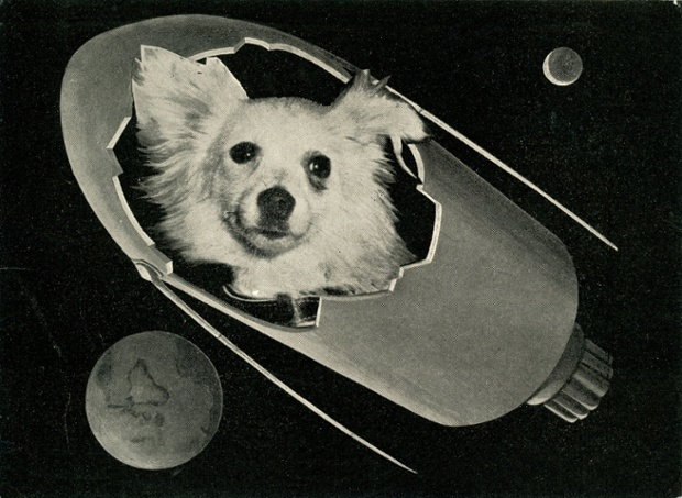 A postcard produced in Italy around 1960 shows an image of Kozyavka the space dog.