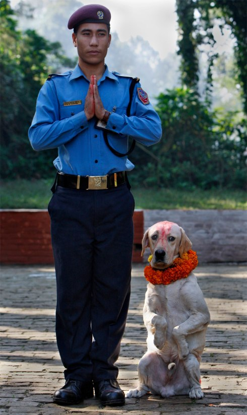 Nepalese police officer and dog handler Padam Gurung and his dog pose for a photograph during celebrations for the Tihar festival at a police kennel in Katmandu, Nepal, Saturday, October 17, 2009. (Photo by Gemunu Amarasinghe/AP Photo)