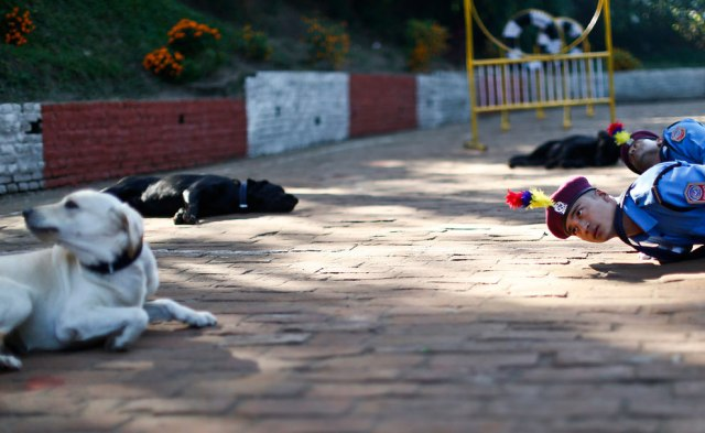 Nepalese police officers perform during a worship ceremony at Nepal's Central Police Dog Training School as part of the Diwali festival, also known as Tihar Festival, in Kathmandu, Nepal, October 22, 2014. (Photo by Narendra Shrestha/EPA)