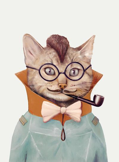 Eclectic Cat