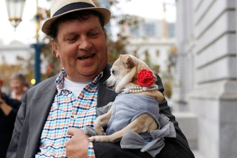 "Dean Clark carries Frida, a female Chihuahua, outside City Hall after the San Francisco Board of Supervisors issued a special commendation naming Frida ""Mayor of San Francisco for a Day"" in San Francisco, California November 18, 2014. (Photo by Stephen Lam/Reuters)"