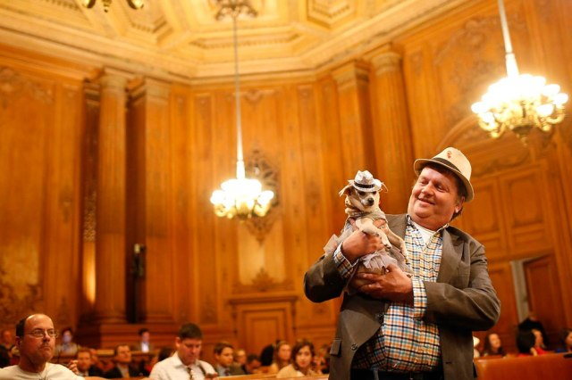 """Dog owner Dean Clark presents Frida, a female Chihuahua, as the San Francisco Board of Supervisors issues a special commendation naming Frida """"Mayor of San Francisco for a Day"""" in San Francisco, California November 18, 2014. (Photo by Stephen Lam/Reuters)"""