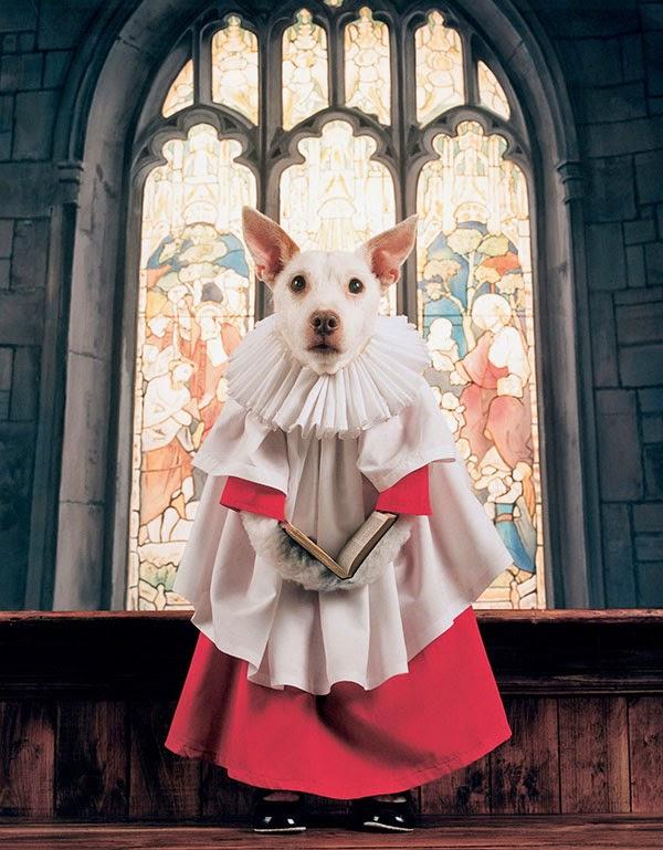 Paddy - Choirboy 2001