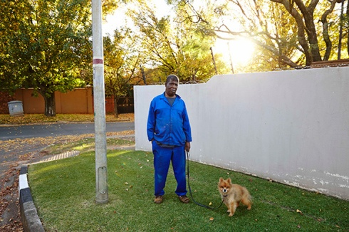 Marc Shoul: Dog Walkers, Cyril and Chiko, Bristol Road, Saxonwold