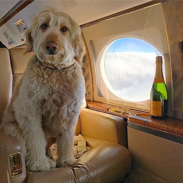 Coach? No. I only fly private.