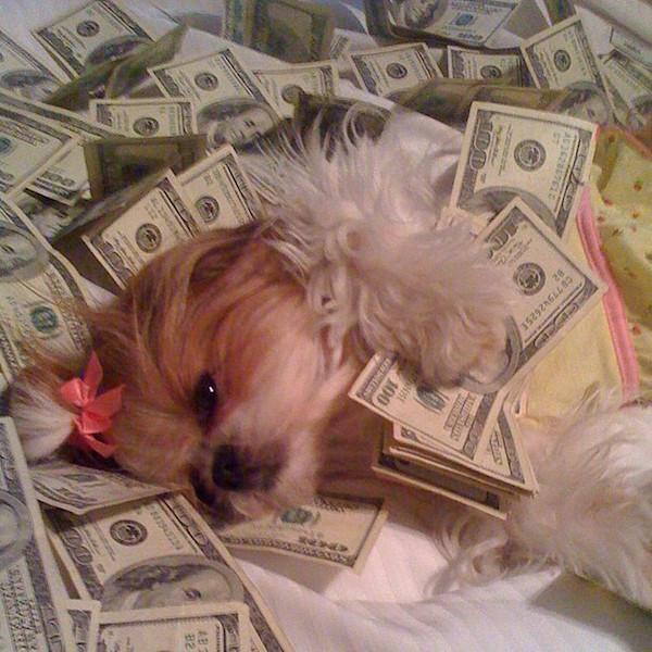 I woke up like this. #cashflowflawless