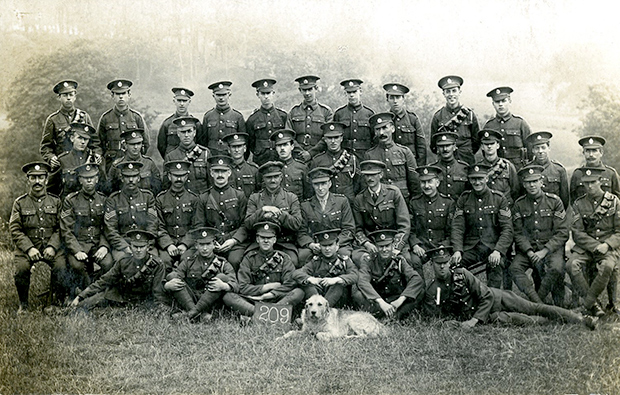 209th (Norfolk) Field Company, Royal Engineers, of the 34th Division.