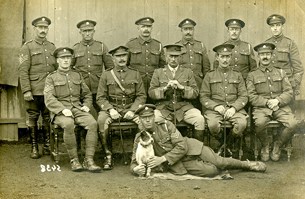 Officers, Warrant Officers, Staff Sergeants, of the Army Service Corps (ASC) c. 1917.