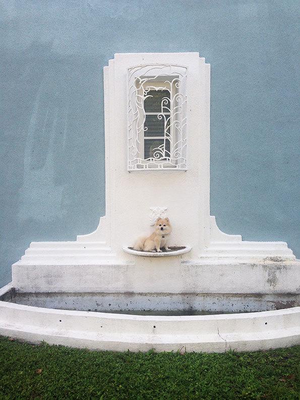 Tomas Werner: Blue Fountain