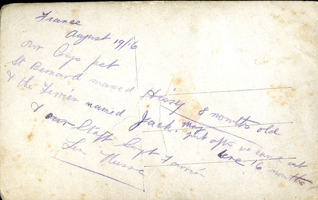 Note on reverse of card: France, August 1916. Our Corps pet St Bernard named Hissy 8 months old & the Terrier named Jack. May – just after we came out here 16 months – & our Staff Sgt Farrier Len Nusse.