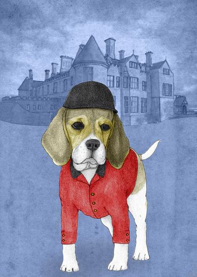 Beagle With Beaulieu Palace