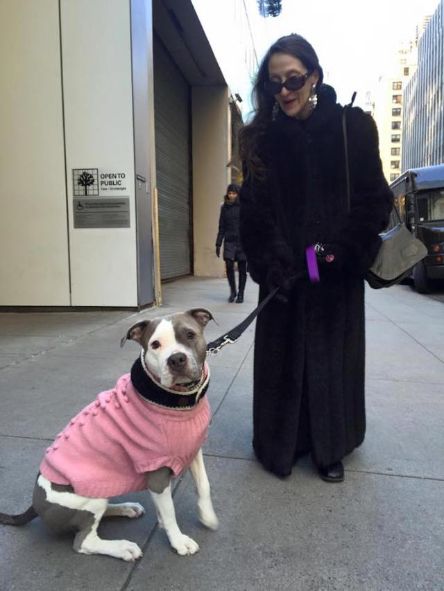 """Karen and Lucy on the Upper East Side of Manhattan. """"My last dog, Rose, lived to be 16. When she passed, I wasn't sure if I'd ever be ready to get another dog. But then I heard about Lucy, who was a rescue dog needing a home. I think Rose brought her to me."""""""