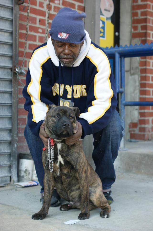 """Pusher is a 5-month-old dog from Brownsville, Brooklyn. """"I want him to be nice. Especially when the women and children walk by."""""""