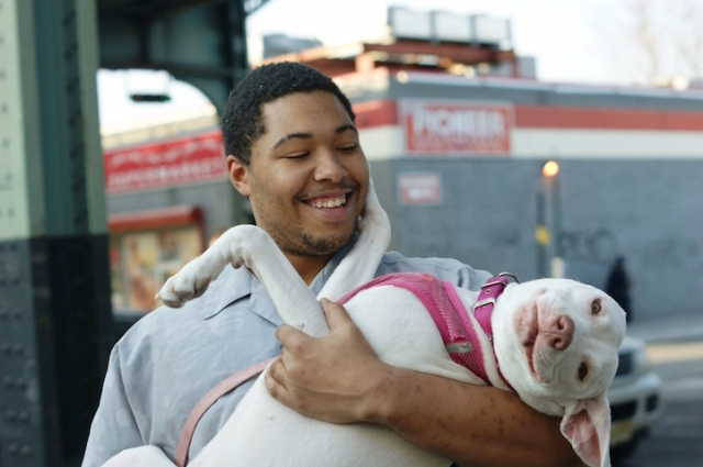 """Layla is a 1-year-old dog from Bushwick, Brooklyn. """"My Dad found her running down the street 2 months ago."""""""