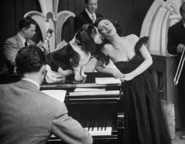 TV star dog J. J. Morgan singing with Peggy Martin. (Photo by Walter Sanders/The LIFE Picture Collection/Getty Images)